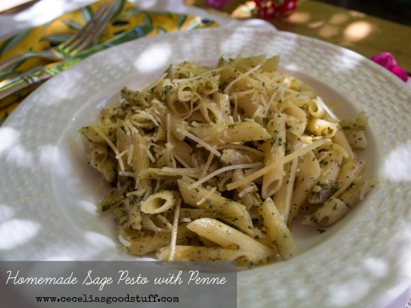 Sage Pesto with Penne Pasta CeceliasGoodStuff.com | Good Food for Good People