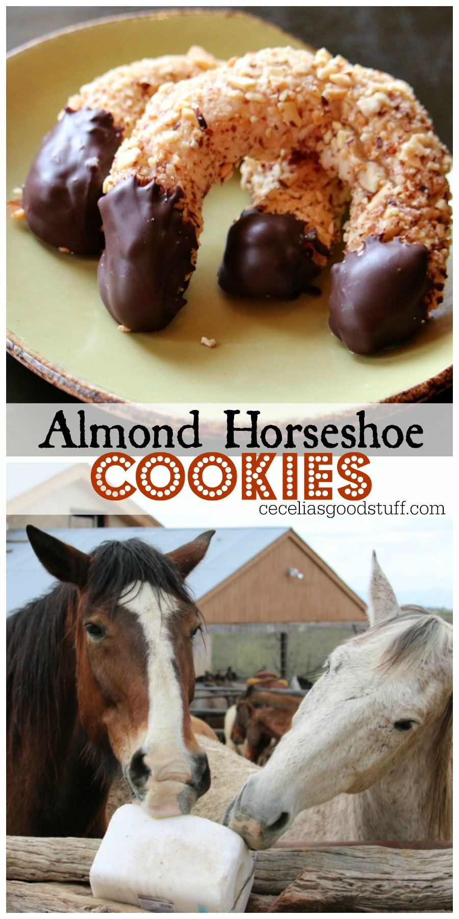 Recipe for Almond Horseshoe Cookies