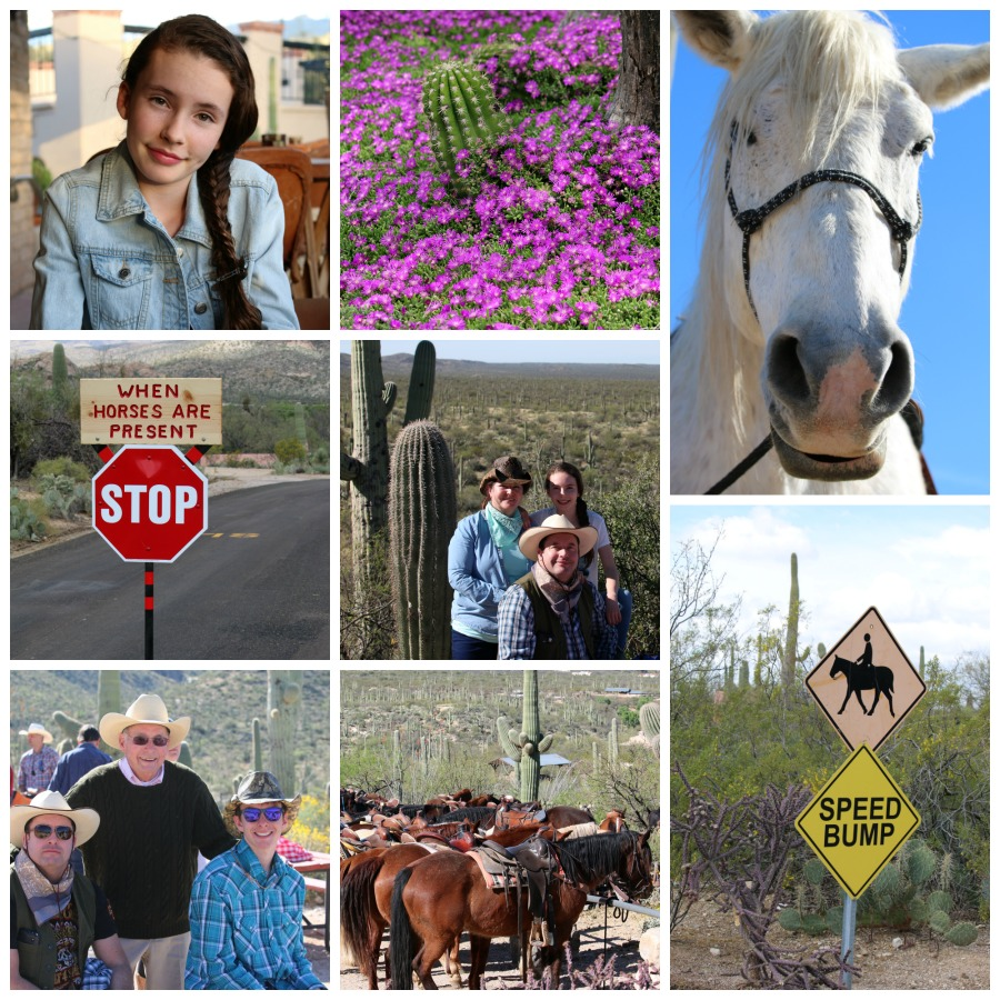 Tanque Verde Ranch Vacation