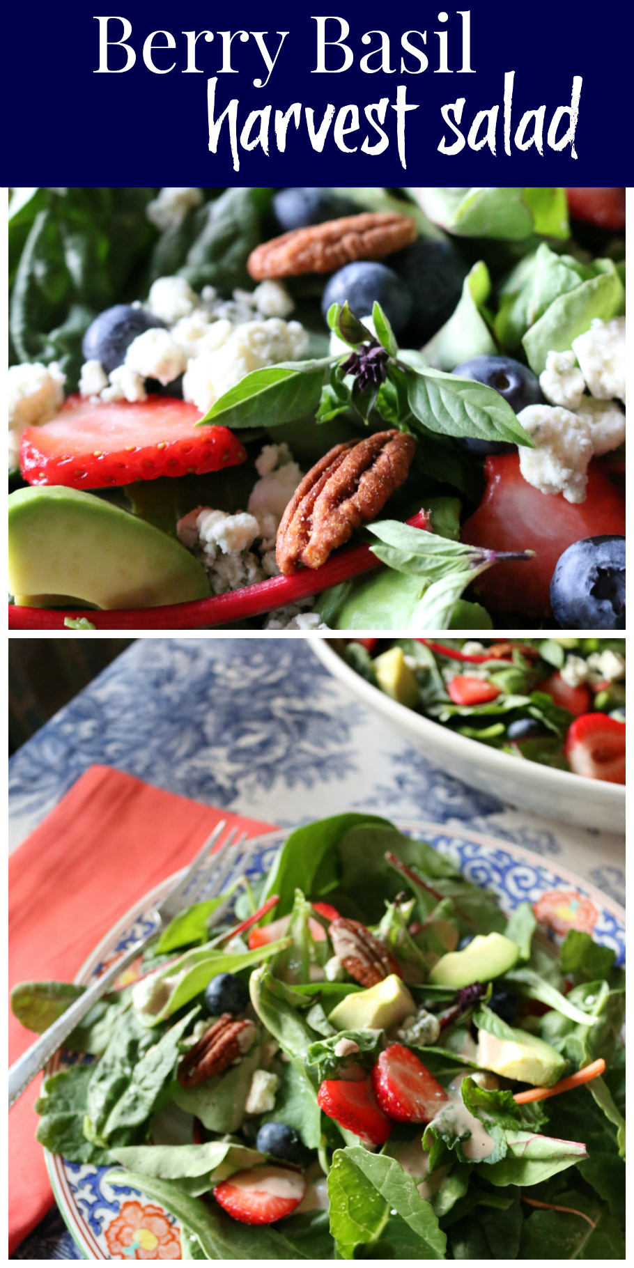 Berry Basil Harvest Salad | CeceliasGoodStuff.com | Good Food for Good People