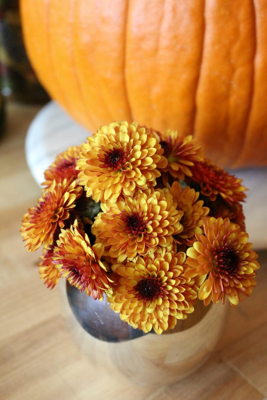 I love fall mums. And yes I already bought a pumpkin! I love fall.