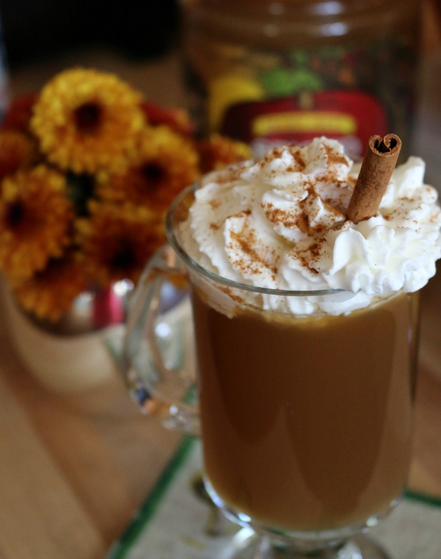 Perfect Fall Cocktail Recipe Hot Spiced Apple Pie Cocktail