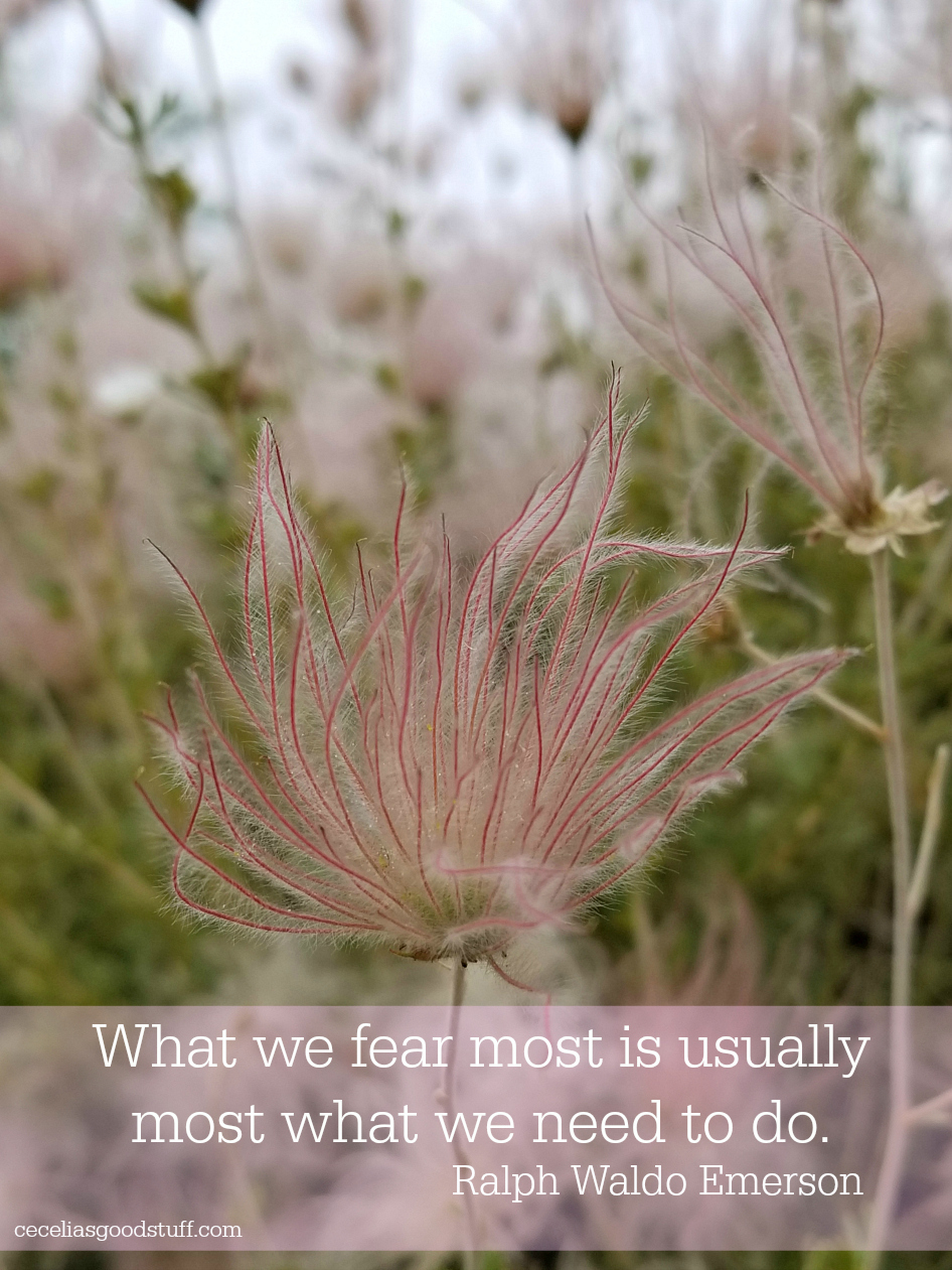 "What we fear most is usually most what we need to do."" Ralph Waldo Emerson"